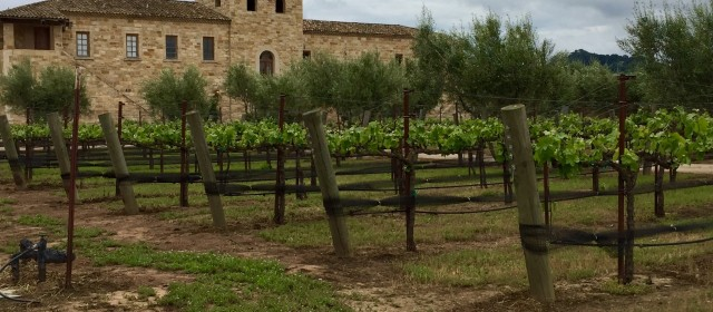 Sunstone Vineyards & Winery: Old World Charm in a New World Setting