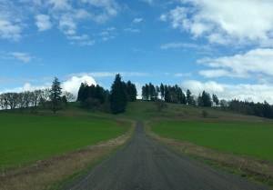 Soter Vineyards Oregon